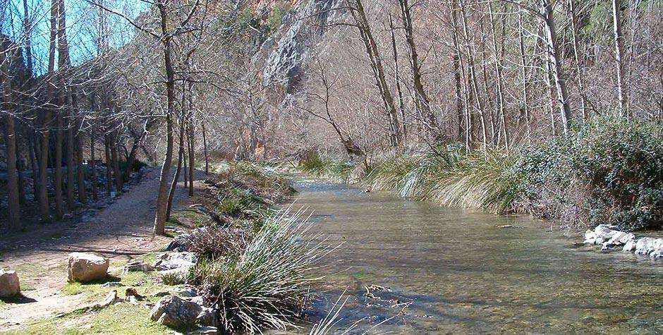 Las Hoces del Río Mesa